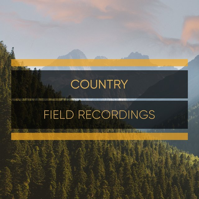 Background Rustic Country Field Recordings