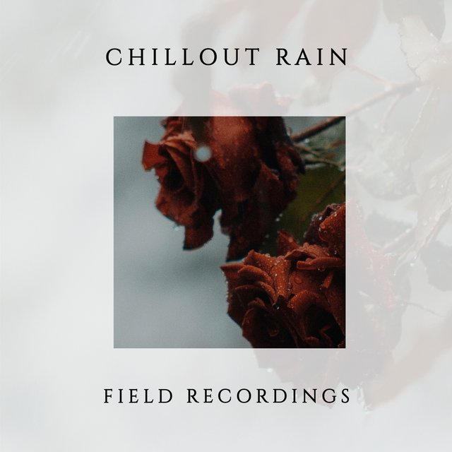 Mellow Chillout Rain & Water Field Recordings
