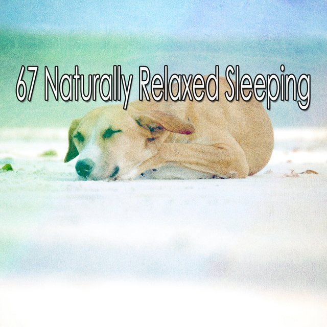67 Naturally Relaxed Sleeping