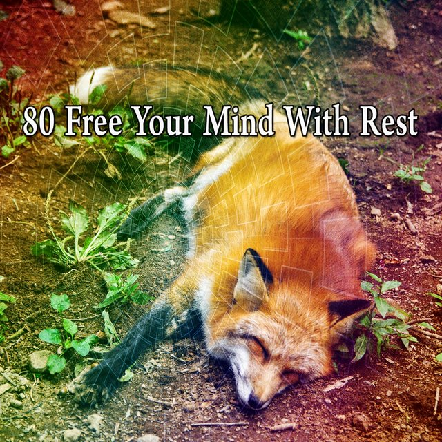 80 Free Your Mind with Rest