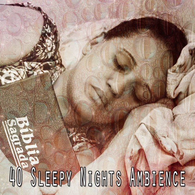 40 Sleepy Nights Ambience