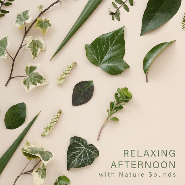 Relaxing Afternoon with Nature Sounds - Relaxation Time, Instrumental Nature Sounds, Peace & Relaxation