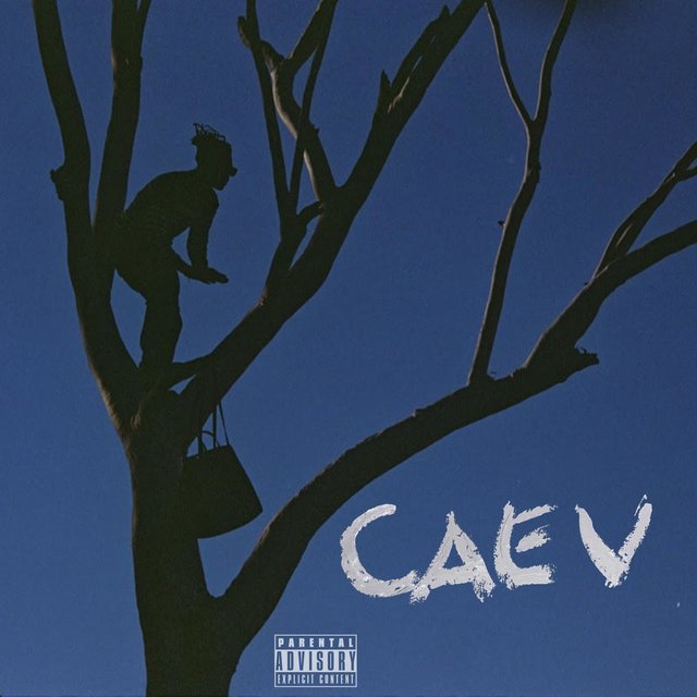 Cover art for album High As My Fashion by Caev