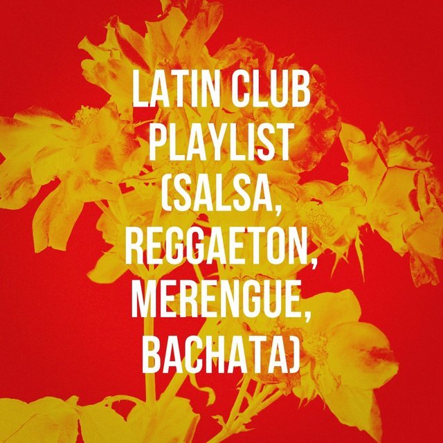 Latin Club Playlist (Salsa, Reggaeton, Merengue, Bachata)