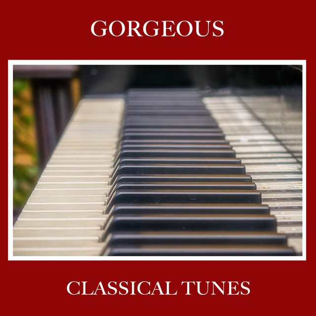 #5 Gorgeous Classical Tunes