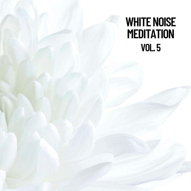 White Noise Meditation Vol. 5, The White Noise Zen & Meditation Sound Lab