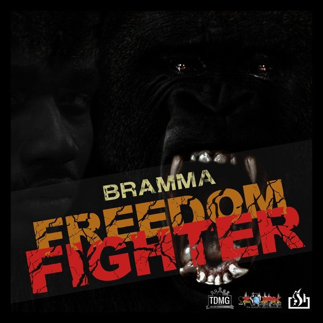 Freedom Fighter-Single