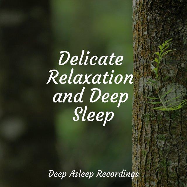 Delicate Relaxation and Deep Sleep