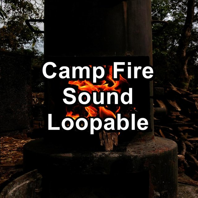 Camp Fire Sound Loopable