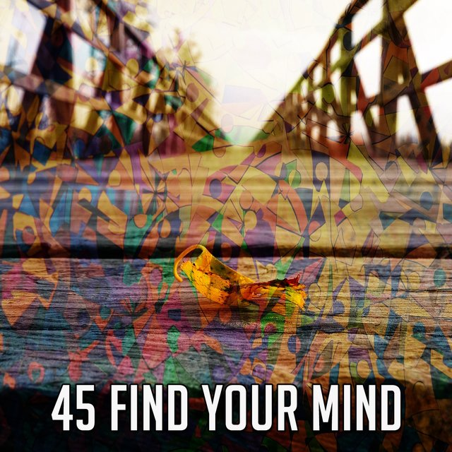 45 Find Your Mind