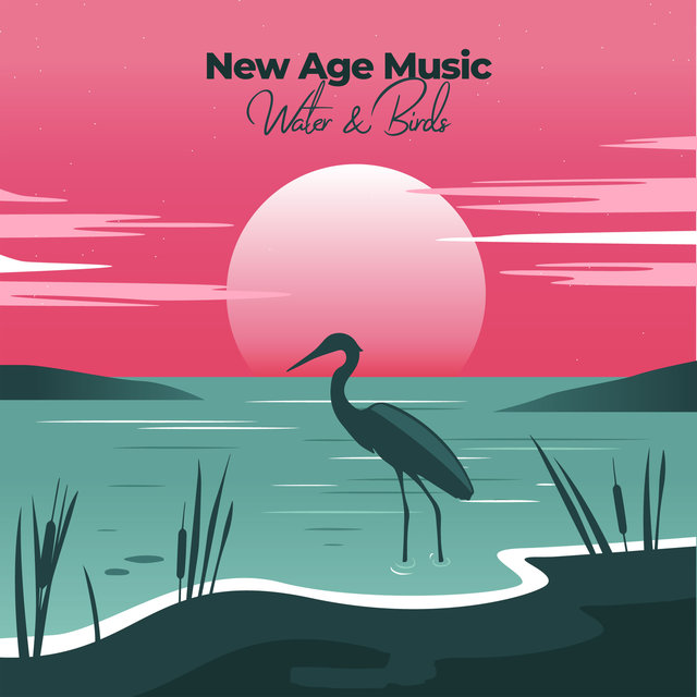 New Age Music – Water & Birds
