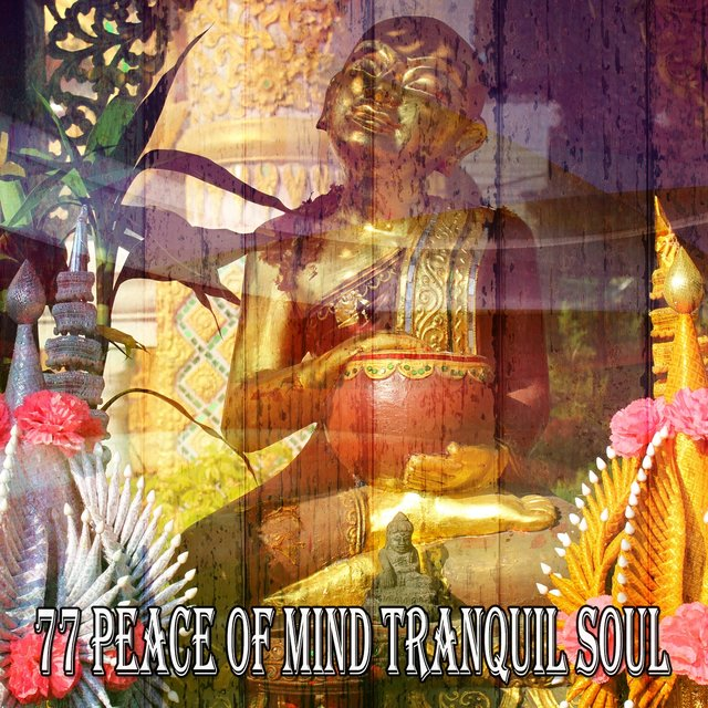 77 Peace of Mind Tranquil Soul