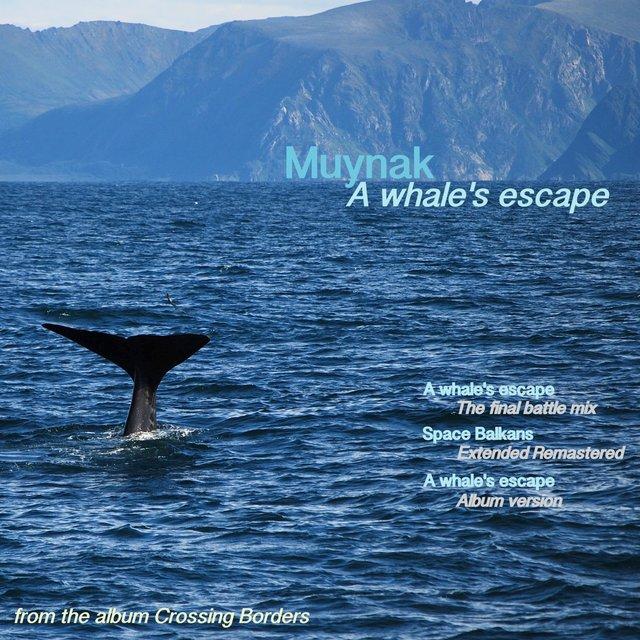 Cover art for album A Whale's Escape by Muynak
