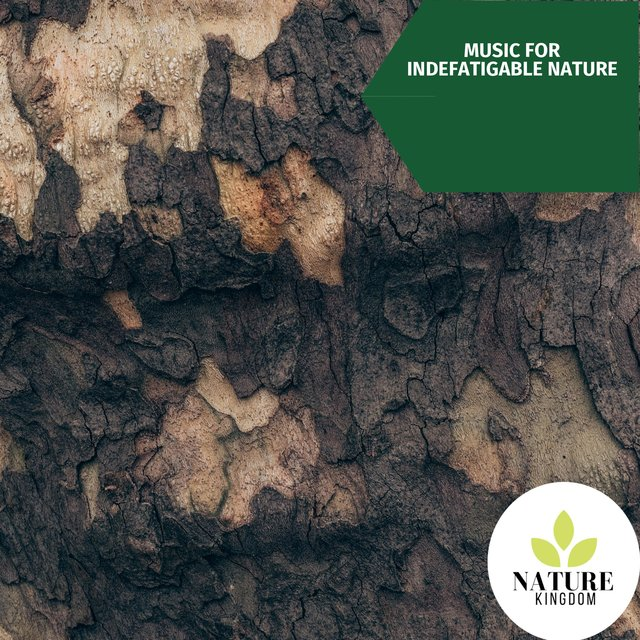 Music for Indefatigable Nature