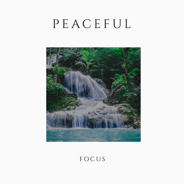 Peaceful Focus