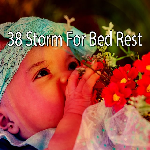 38 Storm for Bed Rest