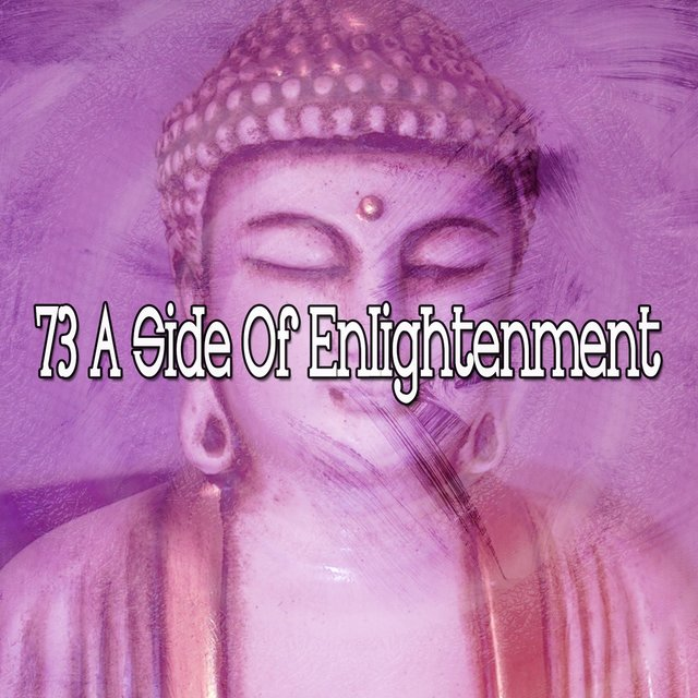 73 A Side of Enlightenment