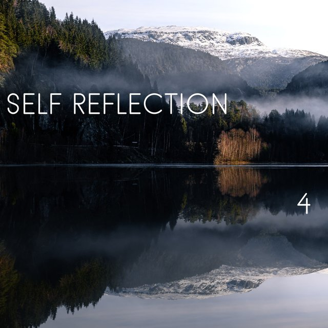 Self Reflection, Vol. 4