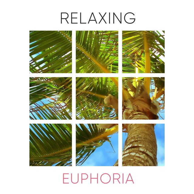 # 1 Album: Relaxing Euphoria
