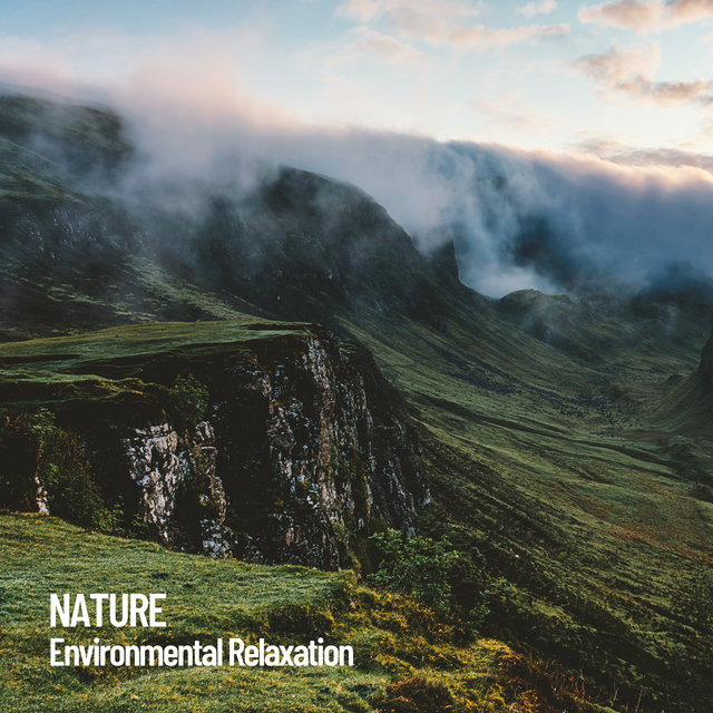 Nature: Environmental Relaxation