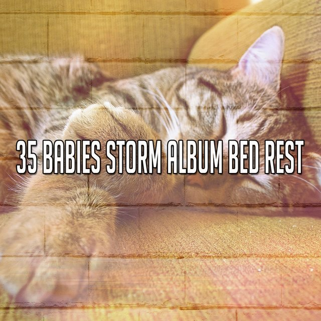 35 Babies Storm Album Bed Rest