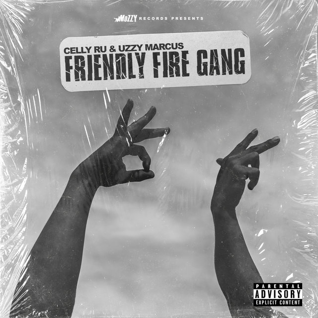 Friendly Fire Gang