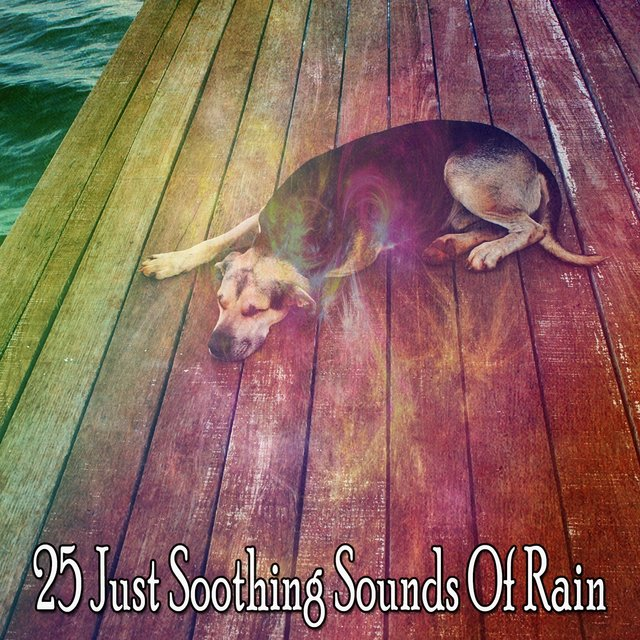 25 Just Soothing Sounds of Rain