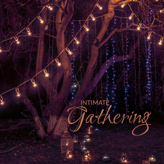Intimate Gathering - Jazz Music for Various Occasions: A Graduation, Anniversary, Birthday, Reunion, or Celebration of Friendship