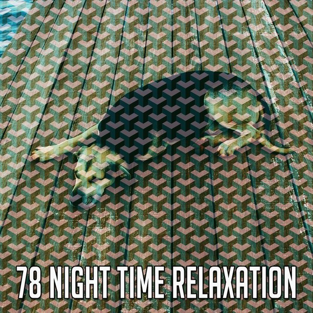 78 Night Time Relaxation