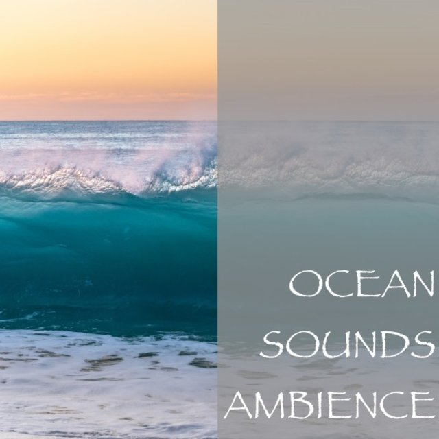 Ocean Sounds Ambience
