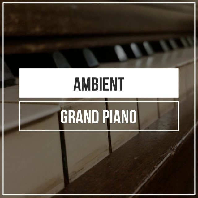 Ambient Evening Grand Piano Chords