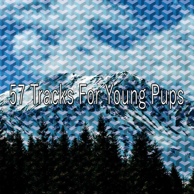 57 Tracks for Young Pups