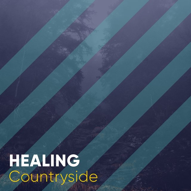 # 1 Album: Healing Countryside