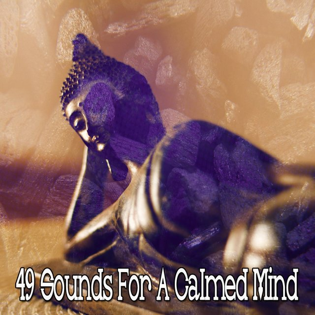 49 Sounds for a Calmed Mind