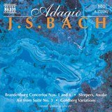 Brandenburg Concerto No. 6 in B flat major, BWV 1051: Adagio ma non troppo