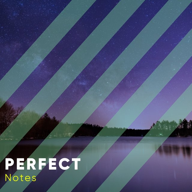 # 1 Album: Perfect Notes