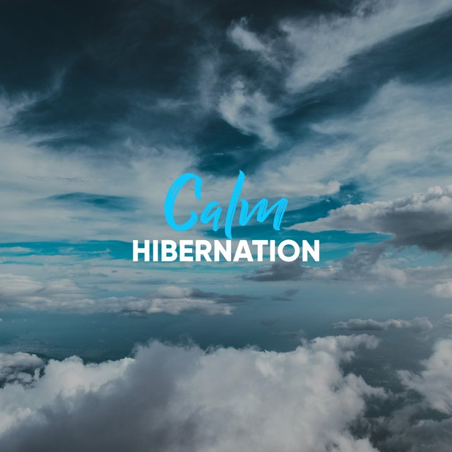 # 1 Album: Calm Hibernation