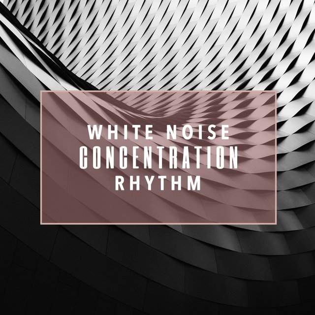 White Noise Concentration Rhythm