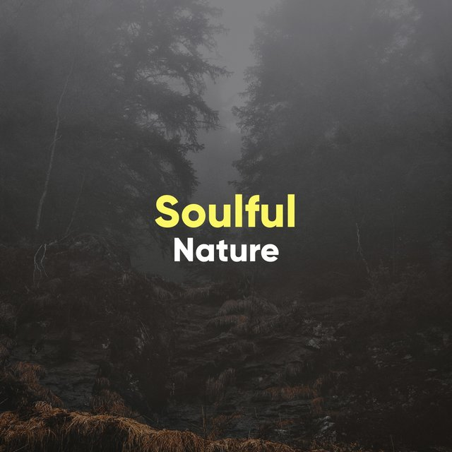 # Soulful Nature
