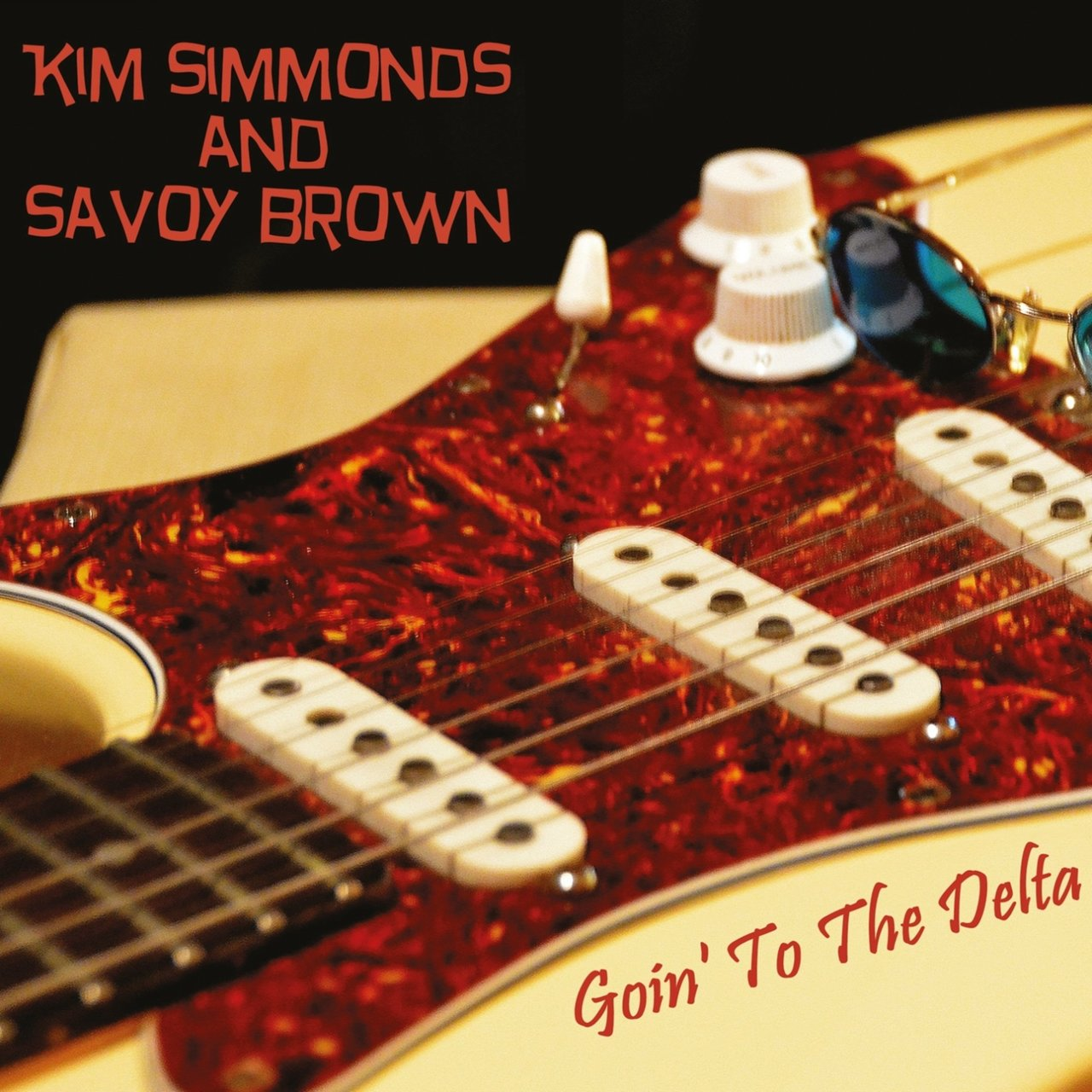 Rock You Ye Police Line R Strap Gitar Dan Bass Daftar Harga Bonus Pick S 1009b Tali Sabuk Goin To The Deltasavoy Brown