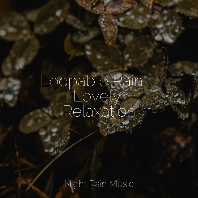 Loopable Rain - Lovely Relaxation