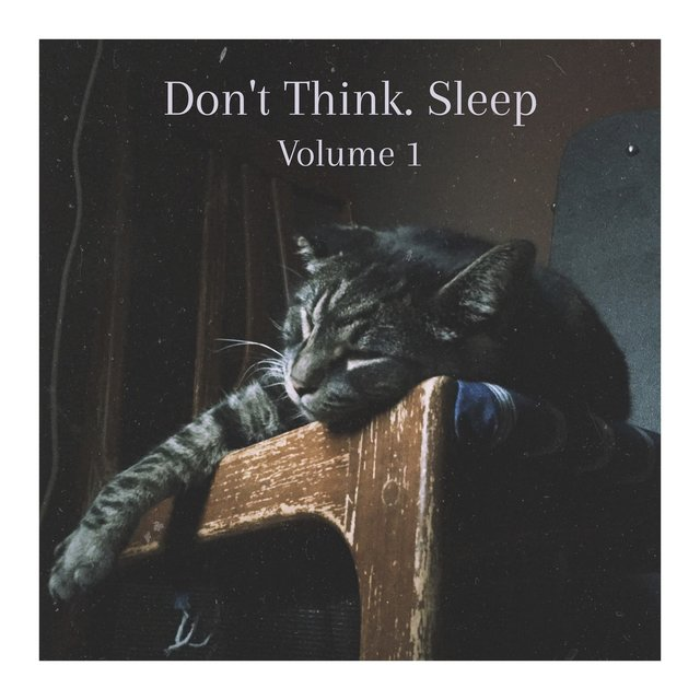Don't Think. Sleep, Volume 1