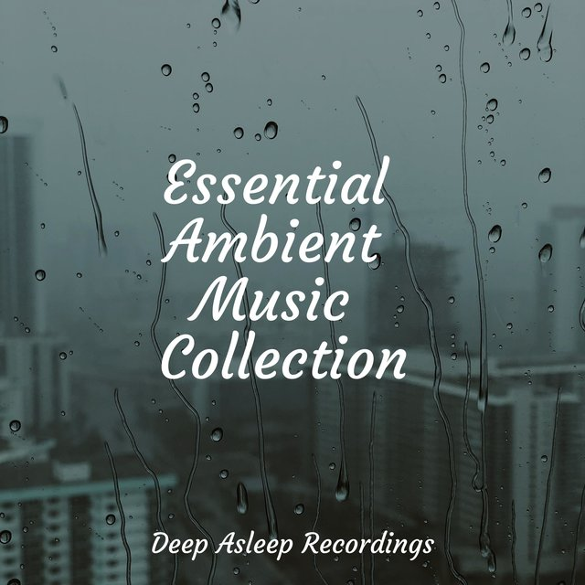 Essential Ambient Music Collection