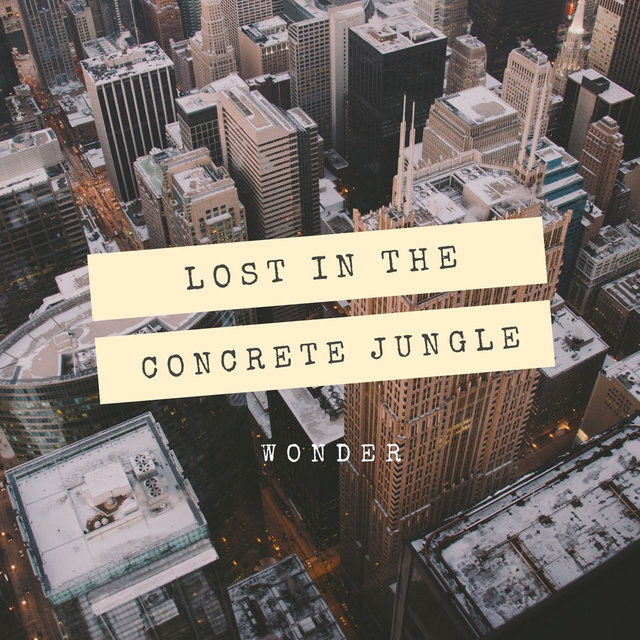 Lost in the concrete jungle