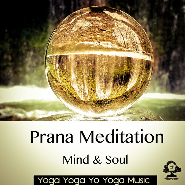 Prana Meditation: Mind & Soul