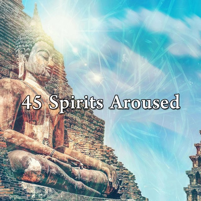 45 Spirits Aroused