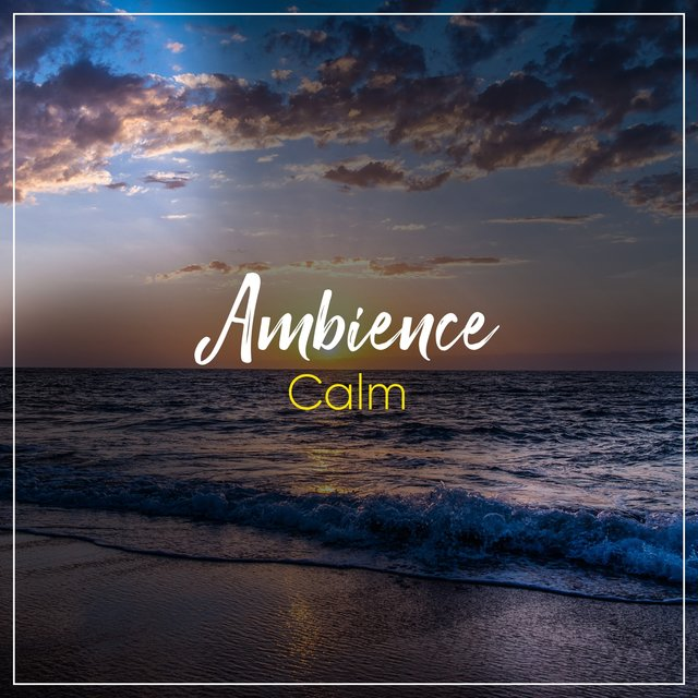 #Calm Ambience