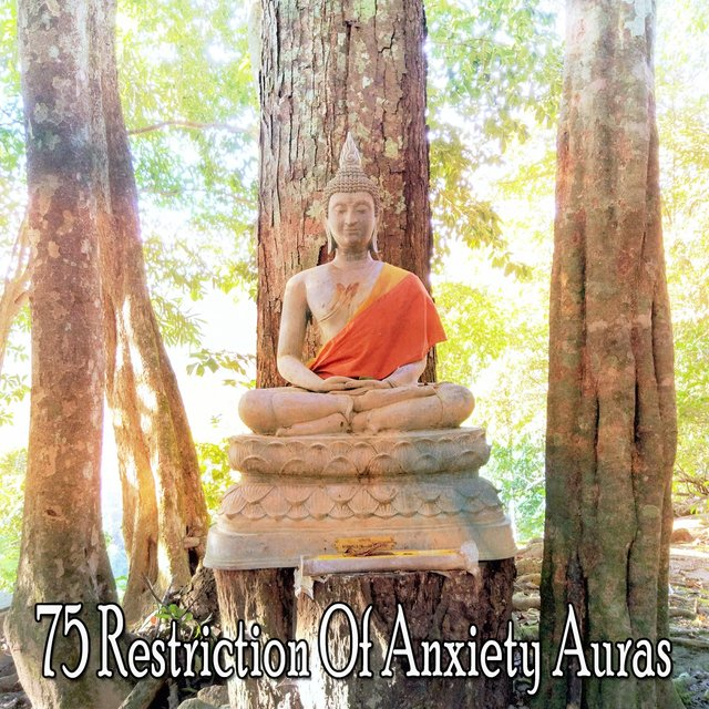 75 Restriction of Anxiety Auras