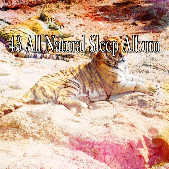 43 All Natural Sleep Album