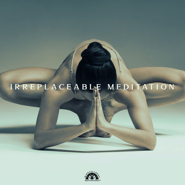 Irreplaceable Meditation: The Key to a Good Life and Better Well-Being